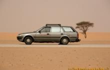 Sahara, Mauretania