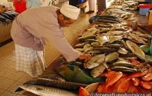 Na targu rybnym w Muscacie