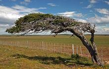 Patagonia – wietrzna kraina